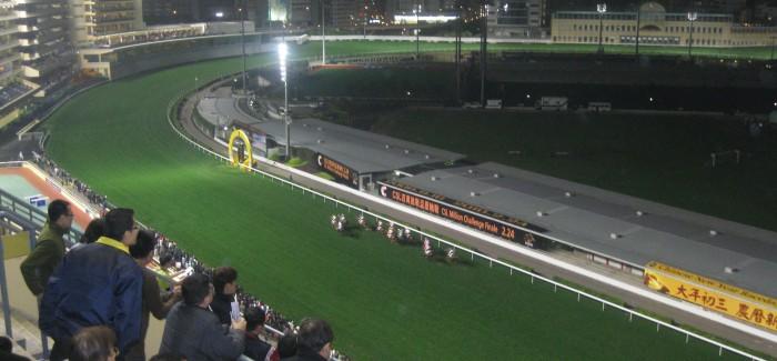 Happy Valley Racecourse, czyli wyścigi konne w Hong Kongu