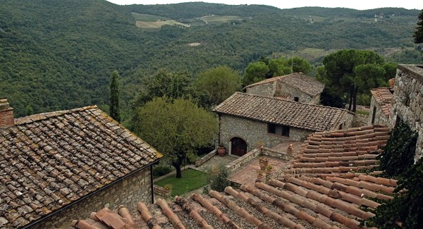 Winnice – Chianti, Toskania