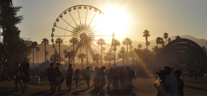 Festiwalowy Niezbędnik