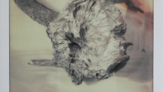 Palec wokół sznurka – wystawa Doroty Buczkowskiej