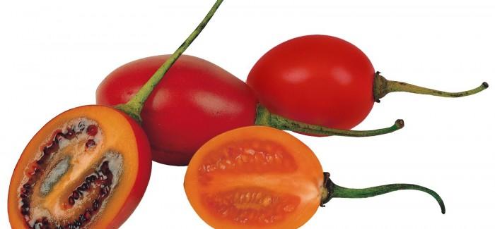 Najlepsze warzywa i owoce online