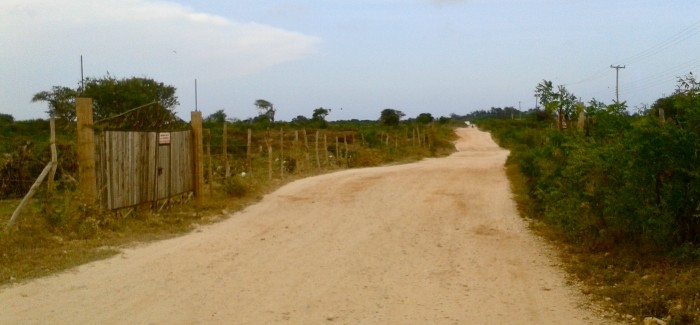 Jogging w Kenii