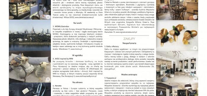 PREMIERA: STYLISHpaper