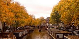 INTOcities: AMSTERDAM/HOLLAND