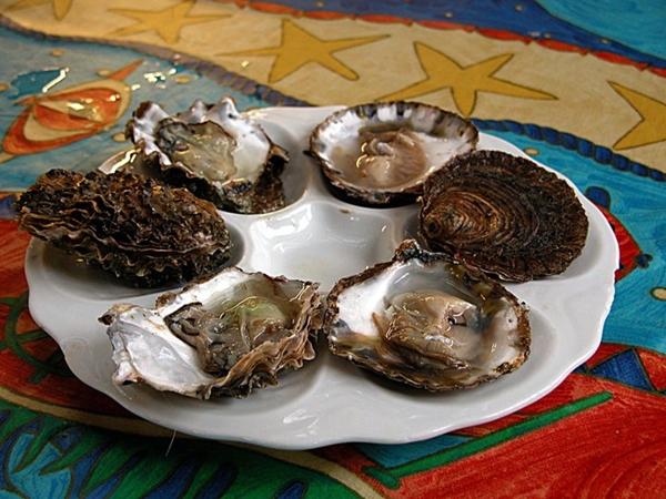 Rogowska, Richard Haward's Oysters 2