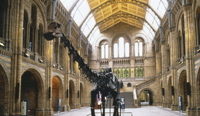 Natural History - nhm.ac.uk
