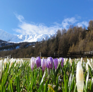 MASO CORTO dla pasjonatów narciarstwa oraz górskich wędrówek