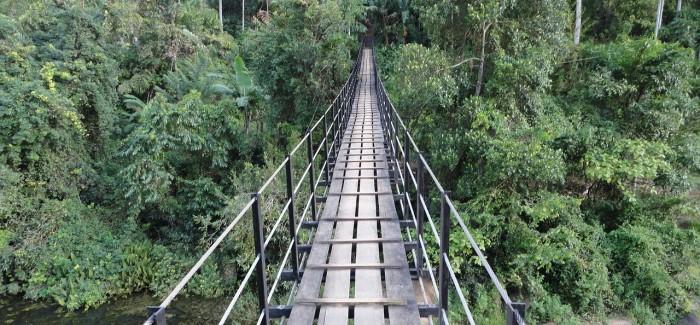 17 powodów, by wybrać się na Sri Lankę