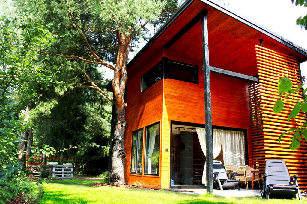 Modern_cabin_Poland_Dlugosiodlo