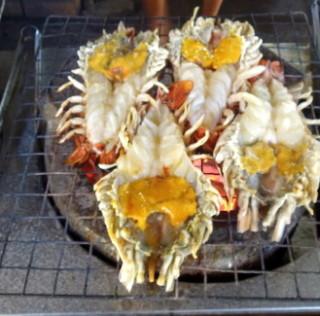 Giant prawns Ayutthaya