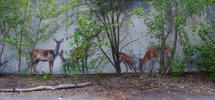 Czarnobyl. Blog story.