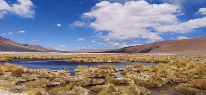 Mała Reporterka Karola: Notatki z Chile i Peru