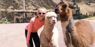 Najpiękniejsze przygody ze zwierzętami